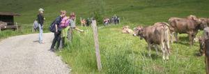 Kinderfreizeit in den Sommerferien @ Kahlrückenalpe Sigiswang